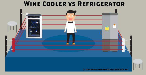 Wine Cooler vs Refrigerator