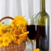 Homemade wine taste